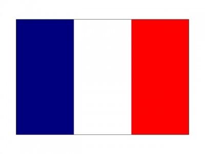 Французский язык